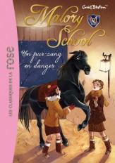 Malory School 03 - Un pur-sang en danger