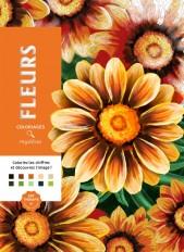 Coloriages mystères Fleurs
