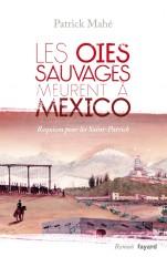 Les oies sauvages meurent à Mexico