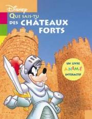 Que sais-tu des châteaux forts ?