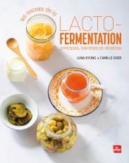 Les secrets de la lacto-fermentation