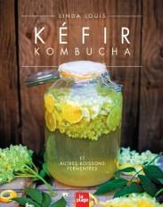 Kéfir, kombucha et autres boissons fermentées