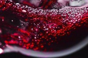 Guide Hachette des Vins 2016 : le palmarès