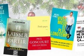 Noël : les ebooks incontournables à mettre dans les liseuses