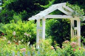 5 petits livres pour un jardin de rêve