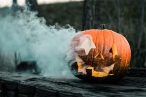 Halloween : notre sélection de livres terrifiants