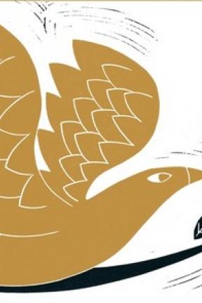 L'oiseau d'or : sublime voyage coloré