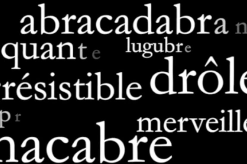 Bertrand Santini : un teaser pour son prochain roman
